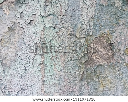 Blues cracked stucco concrete vintage wall background,old wall #1311971918