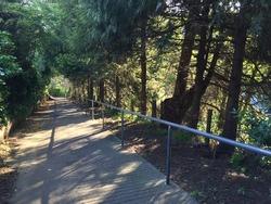 Bluff Hill Walking Track in Napier