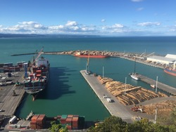 Bluff Hill Walking Track look down Napier port on sunny day