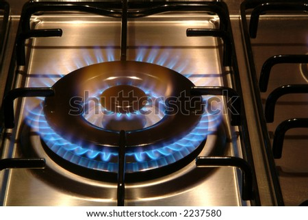 Bluish flames of a gas stove burner