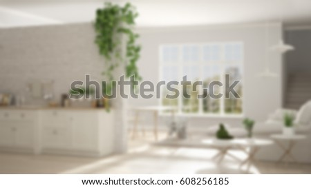 Blur background interior design, scandinavian white minimalist living with kitchen, open space, classic one room apartment, 3d illustration
