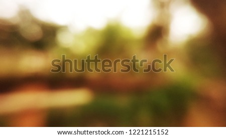 Blur background with natural objects. #1221215152