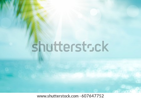 Shutterstock Blur beautiful nature green palm leaf on tropical beach with bokeh sun light wave abstract background. Copy space of summer vacation and business travel concept. Vintage tone filter effect color style