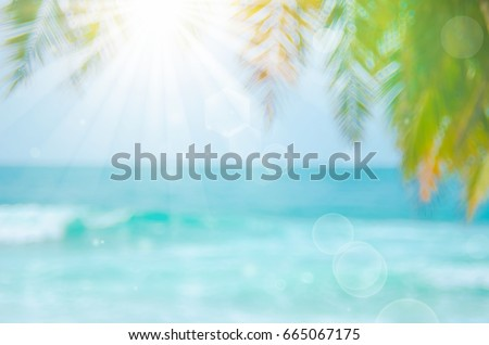 Blur beautiful nature green palm leaf on tropical beach with bokeh sun light wave abstract background.   - Shutterstock ID 665067175