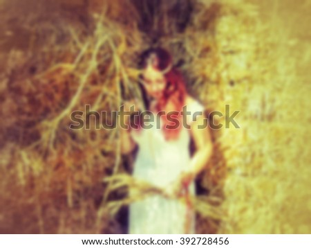 soft wheat background free blur blurred unfocused soft abstract background texture wall