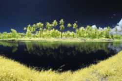 Blur Image Of The Lakeside Viewed In Infrared at Tuaran, Sabah, Malaysia, Borneo.