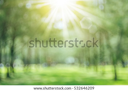 Stock Photo Blur nature green park with bokeh sun light abstract background. Copy space of travel adventure and environment concept. Vintage tone filter color style.
