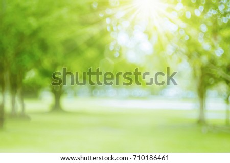 Blur nature green park with bokeh sun light abstract background. Copy space of travel nature adventure and environment ecology concept. Vintage tone filter effect color style.