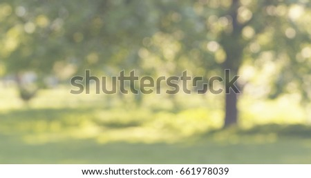blur of apple garden in sunny day with lens flare, wide photo - Shutterstock ID 661978039