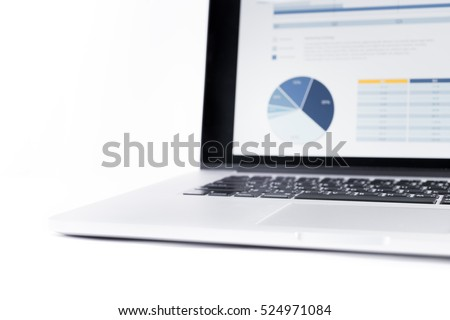 Blur of statistics charts displayed on laptop screen,Financial graph,Business analysis concept