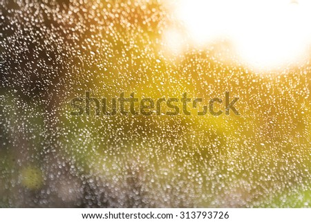 blur of water drops on glass,abstract background #313793726