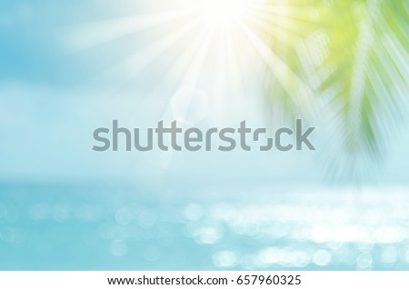 Blur palm leaf on beach with bokeh sun light wave abstract background.   - Shutterstock ID 657960325