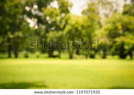Blur park with bokeh light background, nature, garden, spring and summer season #1197071920