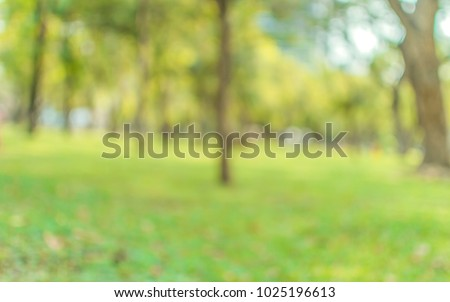 Blurred abstact green tree nature environment in park background - Shutterstock ID 1025196613