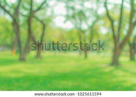Blurred abstact green tree nature environment in park background - Shutterstock ID 1025611594