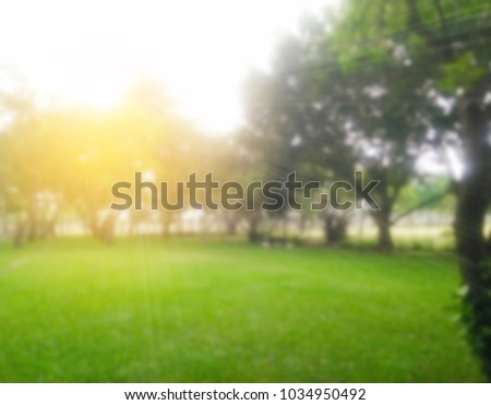 Blurred abstract  background of lawn grass green tree nature environment with sunlight rays ,green nature in the park for background - Shutterstock ID 1034950492