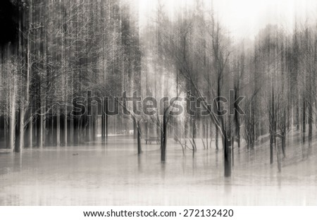 blurred abstract background photo of Beautiful park at Nami Island, South Korea. with surreal motion blur effect