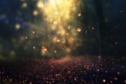 blurred abstract photo of light burst among trees and glitter golden bokeh lights