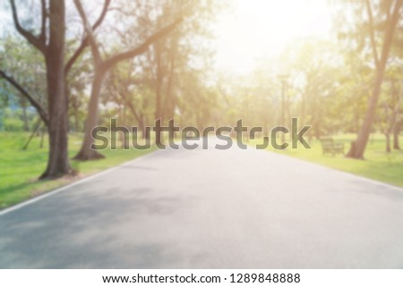 Blurred asphalt pathway in the park. Outdoor park nature concept. #1289848888