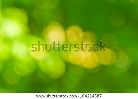 blurred background in natural spring green and yellow colors, the bokeh effect