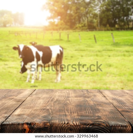 blurred background of cows on grass and free space on table