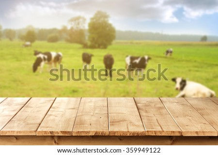 blurred background of cows on green grass and table