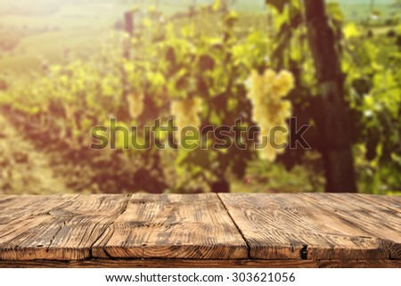 blurred background of vineyard...