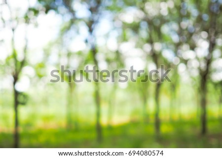 Blurred bokeh of tree green nature background - Shutterstock ID 694080574