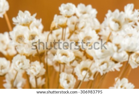Blurred bouquet of dried flowers.