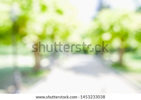 BLURRED CITY PARK BACKGROUND, GREEN TREES BLUR #1453233038