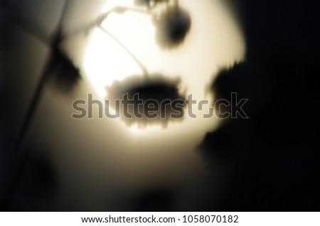 blurred contours plants #1058070182