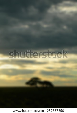 stock-photo-blurred-dusk-on-the-african-savanna-with-trees-and-cloudy-sky-for-travel-backgrounds-287367650.jpg