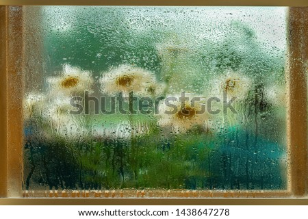 Blurred flowers, daisies in a wooden window frame, wet glass window, raindrops. Natural watercolor painting of nature. Concept of rainy weather, seasons