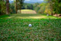 Blurred golf ball on grass field