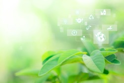 Blurred greenery background with copy space, Sustainable energy logo and technology icon. Agriculture and environmental concept. Ecology reuse and data analysis with internet of thing IOT