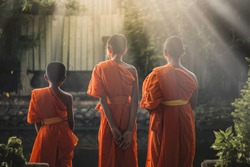 Blurred image of the three novices, Asian monks, happy novices, thai monk in Buddhist temple,Time to concentrate,The monks to pray respect to the Buddha, Thai culture, Thai Novice are prayer, praying,