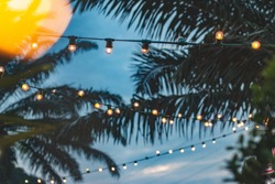 blurred light bokeh with coconut palm tree background on sunset, yellow string lights with bokeh decor in outdoor restaurant