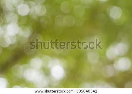 blurred natural background.blur natural and light background in the park.