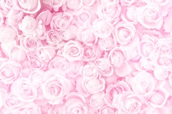 Blurred of sweet roses in pastel color style on soft blur bokeh texture for background