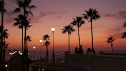 Blurred palms silhouette, twilight sky, California USA, Oceanside pier. Dusk gloaming nightfall atmosphere. Tropical pacific ocean beach, sunset afterglow aesthetic. Dark palm tree, Los Angeles vibes.