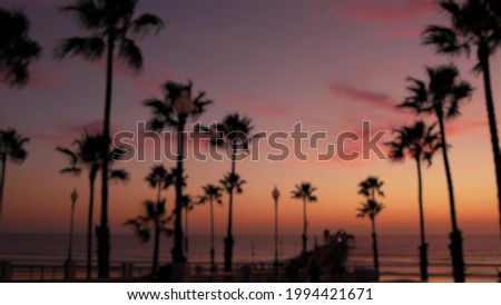 Blurred palms silhouette, twilight sky, California USA, Oceanside pier. Dusk gloaming nightfall atmosphere. Tropical pacific ocean beach, sunset afterglow aesthetic. Dark palm tree, Los Angeles vibes. Сток-фото ©