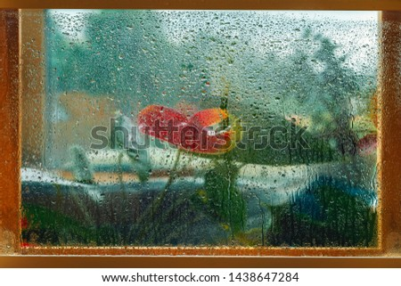 Blurred red flowers in a wooden window frame, wet window glass, raindrops. Natural picture, nature painting, impressionism. Concept of rainy weather, seasons
