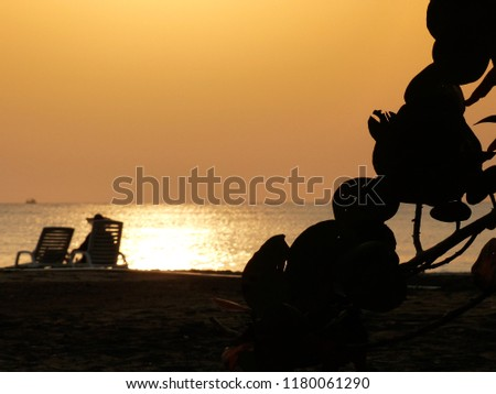 blurred silhouette of a woman with a hat sitting enjoying the sunset on the ocean with a ship on the horizont and leaves of a tree in the foreground horizontal copy space #1180061290