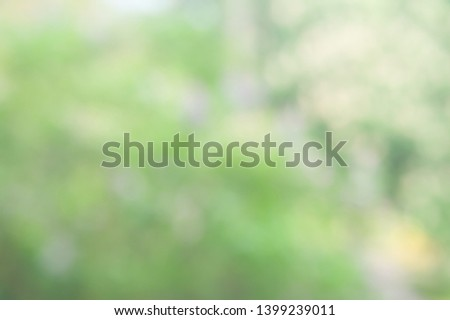 Blurred soft background. Blurred summer background of trees, leaves and flowers. The effect of the defocus of the open aperture. Creative wallpaper for mounting and design.