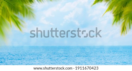 Blurred summer natural marine tropical blue background with palm leaves and sunbeams. Sea and sky with white clouds. Copy space, summer vacation concept