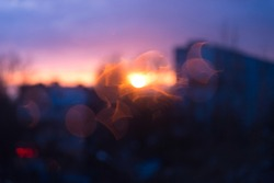Blurred texture of the setting sun in the city through a window with drops from the rain. Purple sunset.