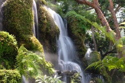 Blurred waterfall in the forest wallpaper background