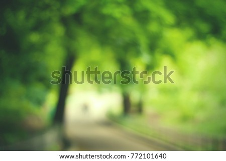 Blurry nature wallpaper. Forest bokeh background.