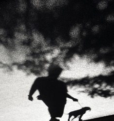Blurry shadow of a person with a dog on a leash and tree branches