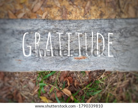 Blurry wood background with word - GRATITUDE Stockfoto ©
